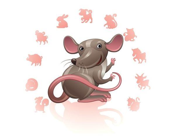 Κινέζικη Αστρολογία: Ο Ποντικός και τα επαγγελματικά του