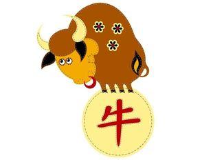Κινέζικη Αστρολογία: Ο Βούβαλος και τα επαγγελματικά του