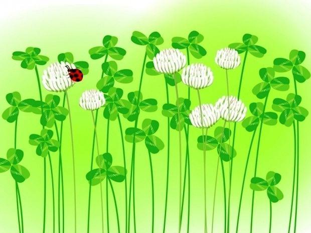 Οι 12 τυχερές στιγμές της ημέρας: Τετάρτη 8 Μαΐου