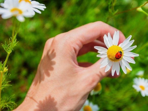 Οι 12 τυχερές στιγμές της ημέρας: Δευτέρα 3 Ιουνίου