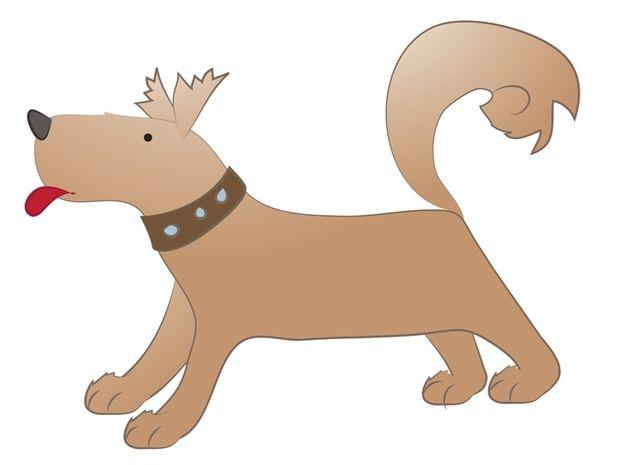 Κινέζικη Αστρολογία: Ο Σκύλος και τα επαγγελματικά του