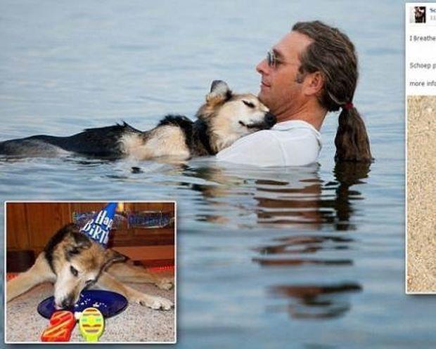 «Έφυγε» ο σκύλος της φωτογραφίας που συγκίνησε χιλιάδες ανθρώπους