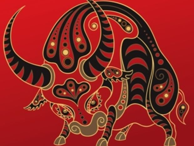 Κινέζικη Αστρολογία: Η ερωτική ζωή του Βούβαλου