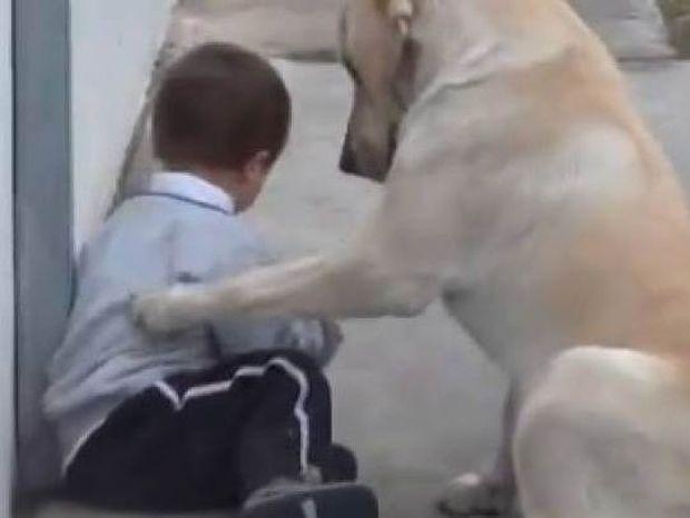 Δείτε: Ένα μοναδικό βίντεο που θα σας κάνει σίγουρα να δακρύσετε