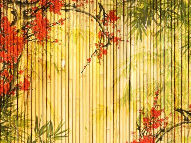 Οι τυχερές και όμορφες στιγμές της ημέρας: Κυριακή 13 Οκτωβρίου