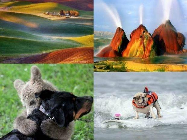 19 εκπληκτικές φωτογραφίες που δεν πρέπει να χάσετε!