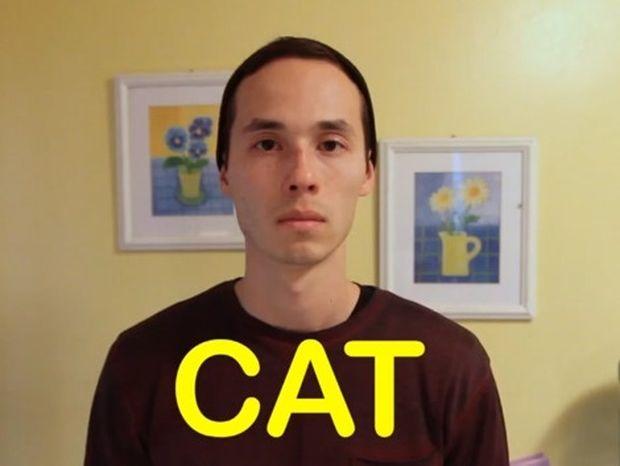 VIDEO: Τι είσαι για τους φίλους σου, γάτα ή σκύλος;