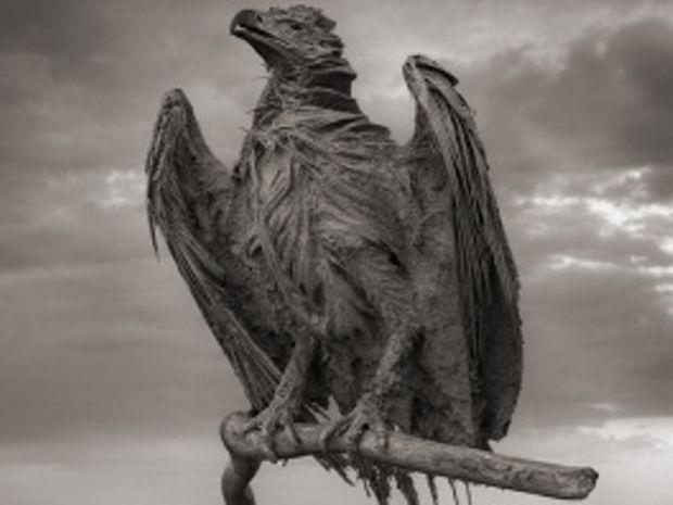 Φονική λίμνη μετατρέπει τα ζώα σε αγάλματα στην Τανζανία (pics)