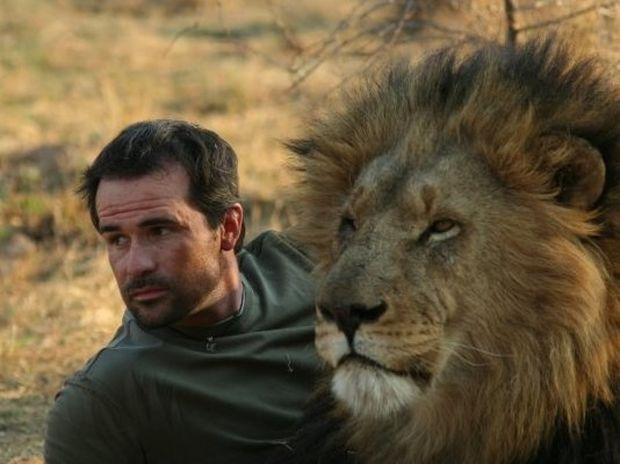 ΕΚΠΛΗΚΤΙΚΟ VIDEO: Ο άνθρωπος που κάνει τα λιοντάρια να φαίνονται γατούλες