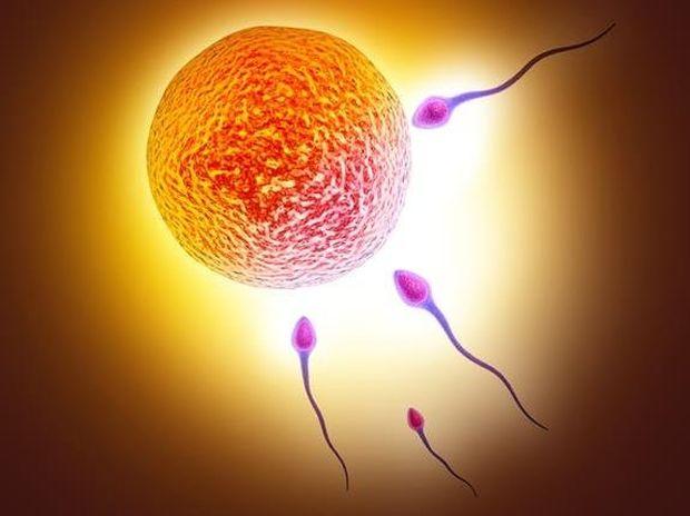 Επτά εχθροί του σπέρματος υπεράνω υποψίας