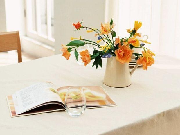Η ευεργετική επίδραση των φυτών στο Φενγκ Σούι του σπιτιού