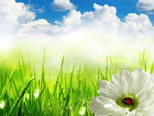 Οι τυχερές και όμορφες στιγμές της ημέρας: Τρίτη 8 Απριλίου