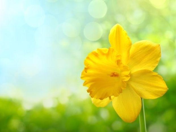Οι τυχερές και όμορφες στιγμές της ημέρας: Κυριακή 13 Απριλίου
