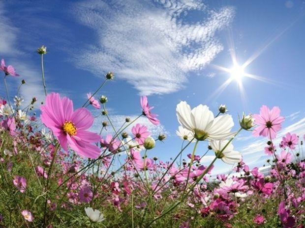 Οι τυχερές και όμορφες στιγμές της ημέρας: Παρασκευή 18 Απριλίου