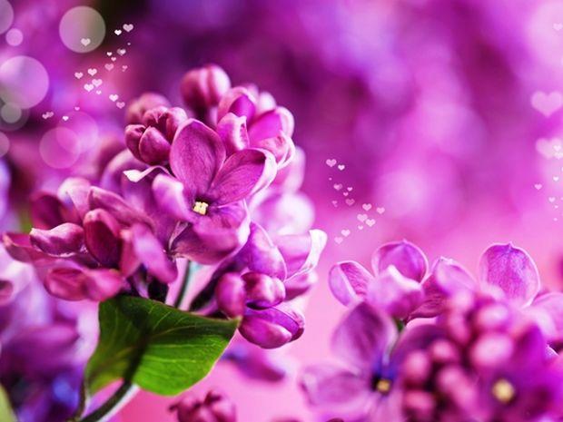 Οι τυχερές και όμορφες στιγμές της ημέρας: Τρίτη 22 Απριλίου