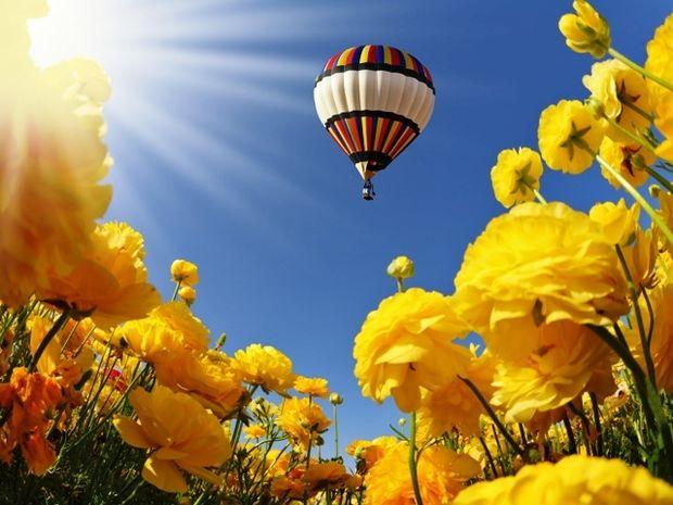 Οι τυχερές και όμορφες στιγμές της ημέρας: Κυριακή 18 Μαΐου