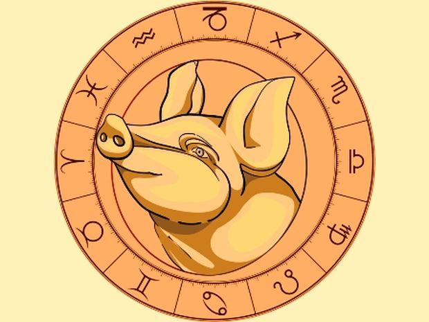 Κινέζικη αστρολογία: Ο Χοίρος και τα 12 ζώδια της Δυτικής αστρολογίας