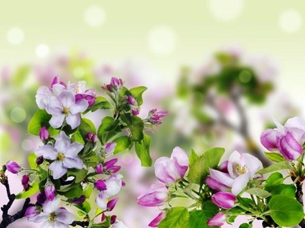 Οι τυχερές και όμορφες στιγμές της ημέρας: Πέμπτη 22 Μαΐου