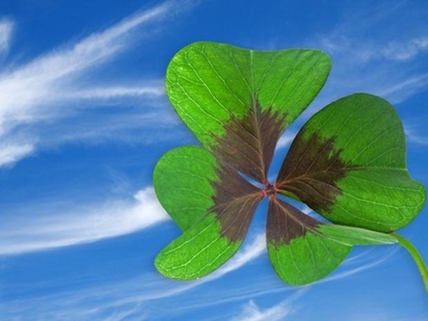 Οι τυχερές και όμορφες στιγμές της ημέρας: Παρασκευή 23 Μαΐου