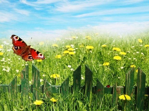 Οι τυχερές και όμορφες στιγμές της ημέρας: Σάββατο 24 Μαΐου