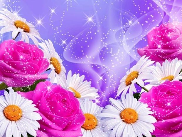 Οι τυχερές και όμορφες στιγμές της ημέρας: Τρίτη 27 Μαΐου