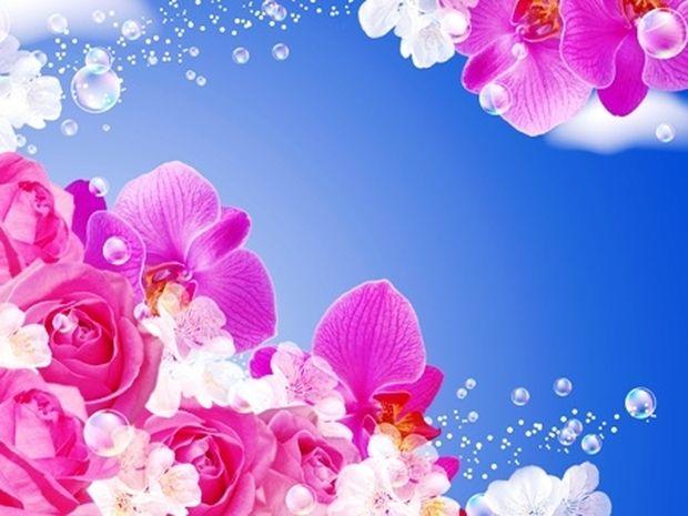 Οι τυχερές και όμορφες στιγμές της ημέρας: Τρίτη 3 Ιουνίου
