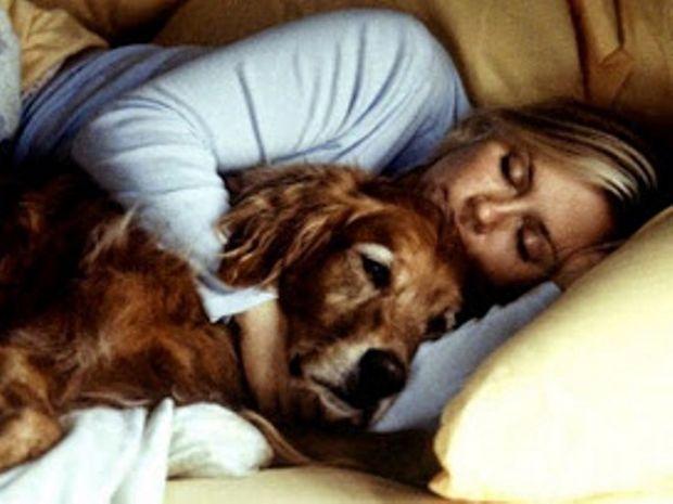 Άσχημα νέα για όσους κοιμούνται με το κατοικίδιό τους…