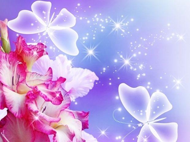 Οι τυχερές και όμορφες στιγμές της ημέρας: Τρίτη 24 Ιουνίου