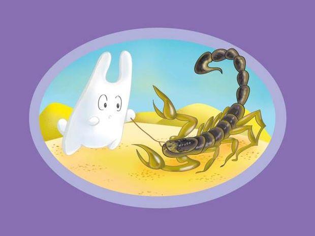 Τα 12 ζώδια διαλέγουν παραλία!