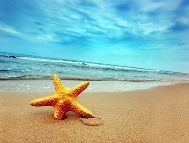 Συμβουλές αντιμετώπισης για ναυτία, τσιμπήματα εντόμων, εγκαύματα από τον ήλιο