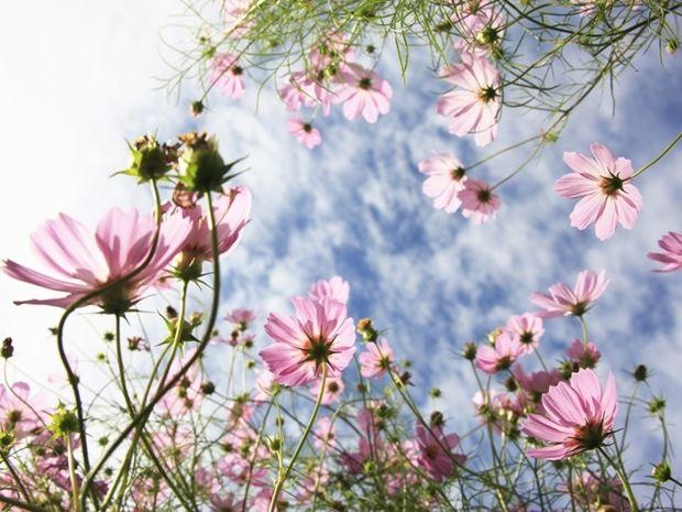 Οι τυχερές και όμορφες στιγμές της ημέρας: Παρασκευή 7 Νοεμβρίου