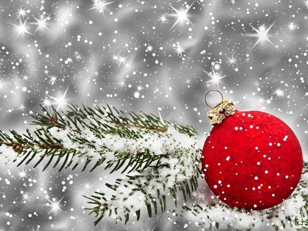 Οι τυχερές και όμορφες στιγμές της ημέρας: Πέμπτη 11 Δεκεμβρίου
