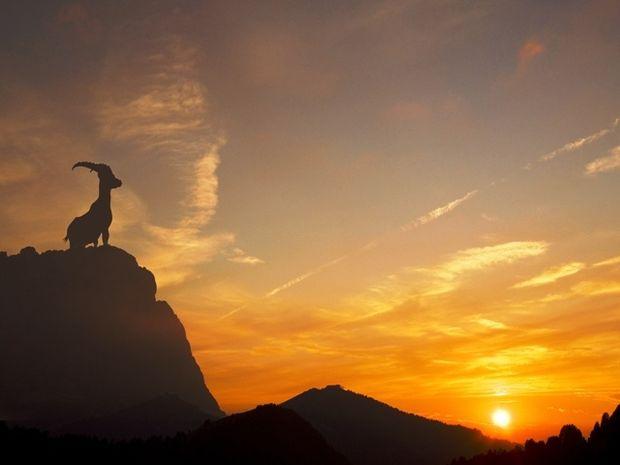 10 πράγματα που δηλώνουν ότι είσαι γνήσιος Αιγόκερως