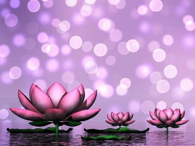 Οι τυχερές και όμορφες στιγμές της ημέρας: Πέμπτη 5 Φεβρουαρίου