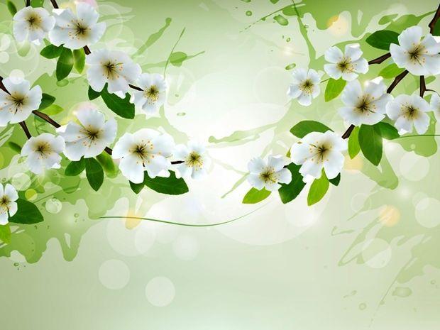 Οι τυχερές και όμορφες στιγμές της ημέρας: Τρίτη 3 Μαρτίου