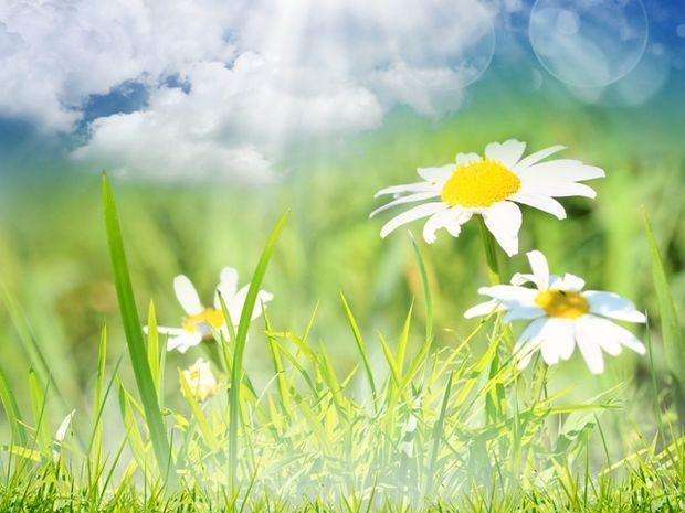 Οι τυχερές και όμορφες στιγμές της ημέρας: Δευτέρα 16 Μαρτίου