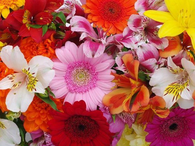 Οι τυχερές και όμορφες στιγμές της ημέρας: Τρίτη 14 Απριλίου
