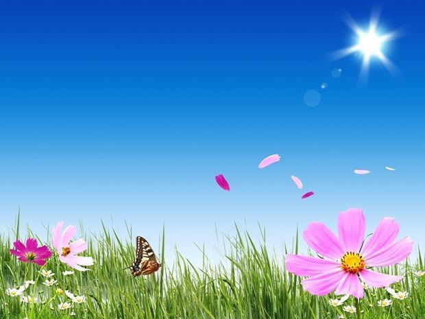Οι τυχερές και όμορφες στιγμές της ημέρας: Παρασκευή 8 Μαΐου