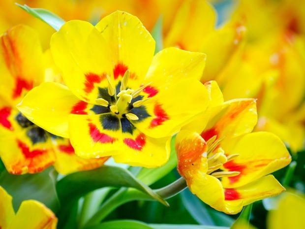 Οι τυχερές και όμορφες στιγμές της ημέρας: Παρασκευή 29 Μαΐου
