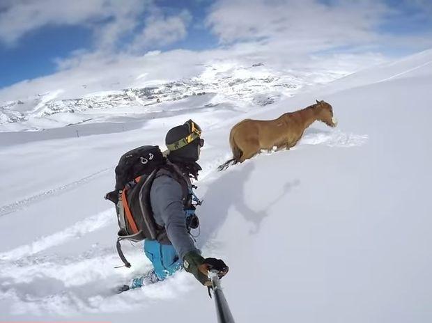 Είδαν ένα άλογο εγκλωβισμένο στο χιόνι! Αυτό που ακολούθησε θα σας συγκινήσει! (video)