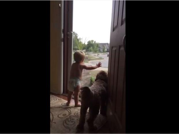 Απίθανο! Με τέτοια υποδοχή από το παιδί και το σκύλο σου, πώς να μη θέλεις να γυρίσεις σπίτι! (video)