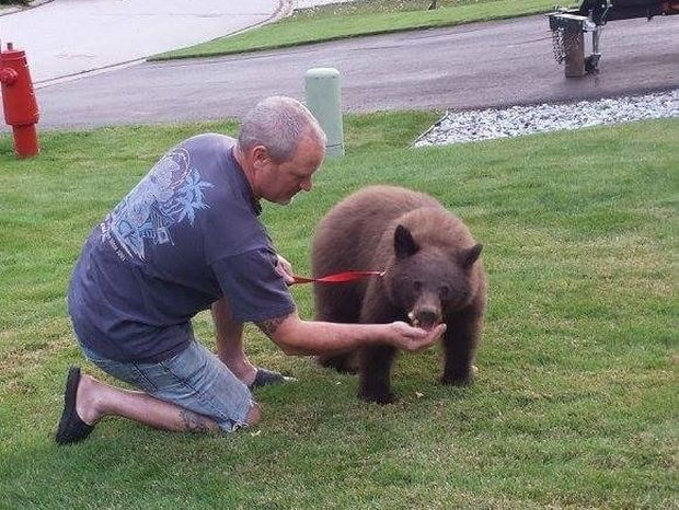 Απίστευτο! Έβγαλε βόλτα με λουράκι… την αρκούδα του!