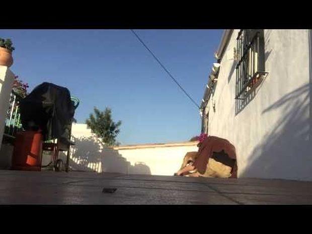 Δε φαντάζεστε την αντίδραση της σκυλίτσας στην έκπληξη που της έκανε ο ιδιοκτήτης της! (video)