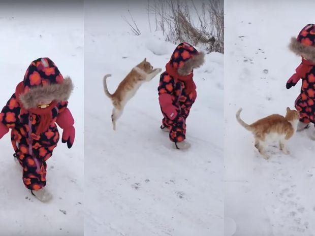 Απίστευτο! Δείτε τι κάνει αυτή η γάτα για λίγα χάδια! (video)