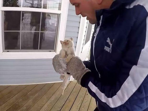 Συγκινητικό! Δείτε το γατάκι που βρέθηκε παγωμένο στα χιόνια και σώθηκε από θαύμα! (video)