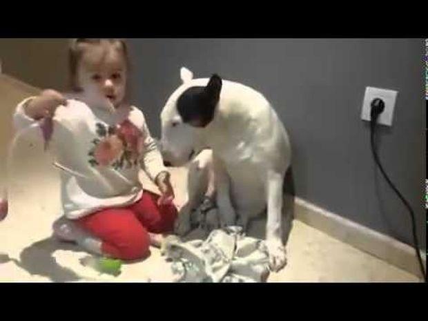 Το κοριτσάκι παριστάνει το γιατρό κι εξετάζει τον τετράποδο φίλο της! (video)