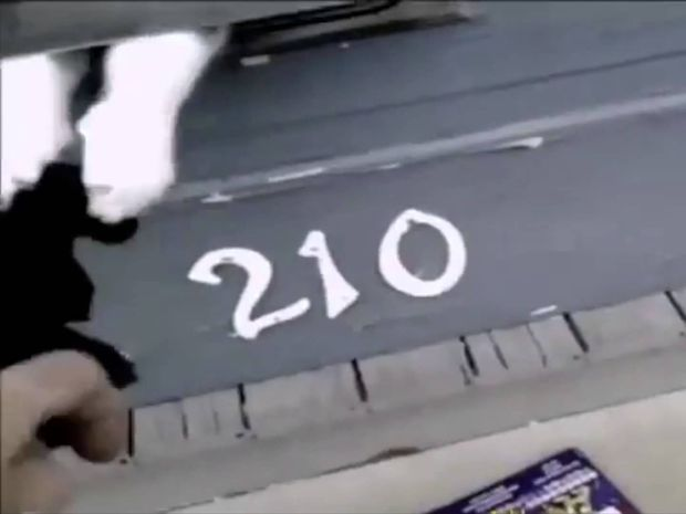 Γάτα εναντίον ταχυδρόμου: ένα - μηδέν! Δείτε το ξεκαρδιστικό βίντεο!