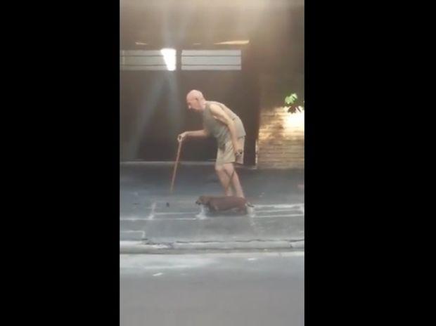 Το υπομονετικό σκυλάκι περπατάει αργά για να συμβαδίζει με τον ιδιοκτήτη του! (video)