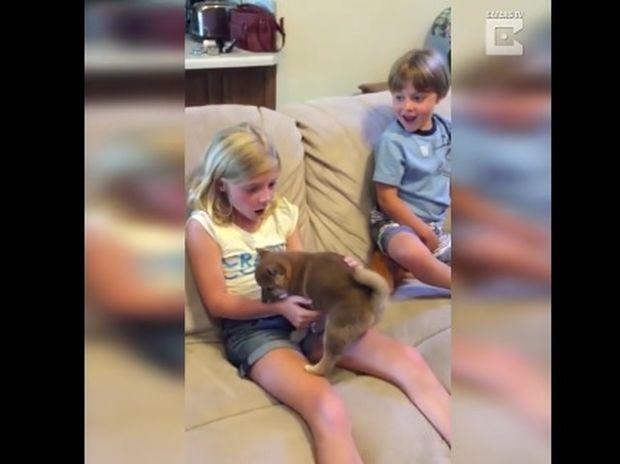 Το καλύτερο δώρο γενεθλίων! (video)