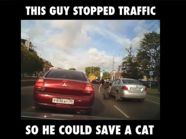 Ο οδηγός σταμάτησε στη μέση του δρόμου για να σώσει ένα γατάκι! (video)